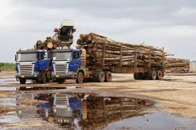 Lorries loaded with timber, Buchana, Liberia – © Mikael Schuer